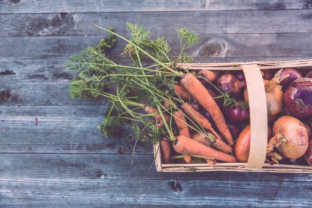 自然農(自然菜園)の概念・考え方について知りたい