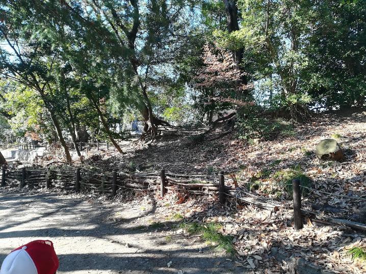 岸の砦土塁1