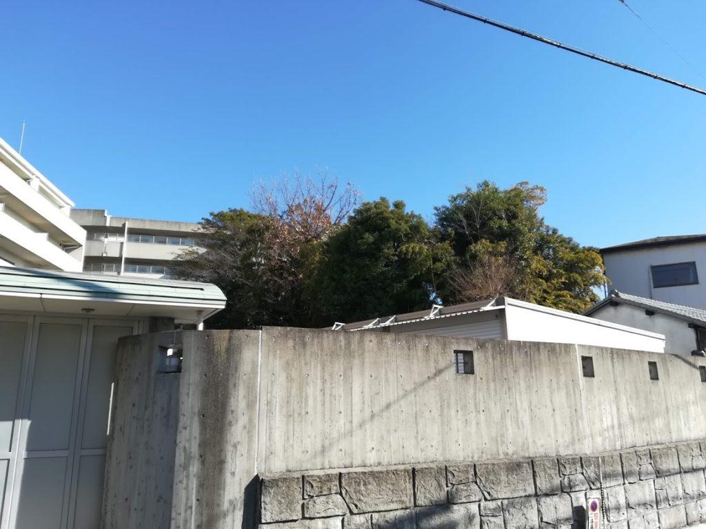 鵯塚砦跡1