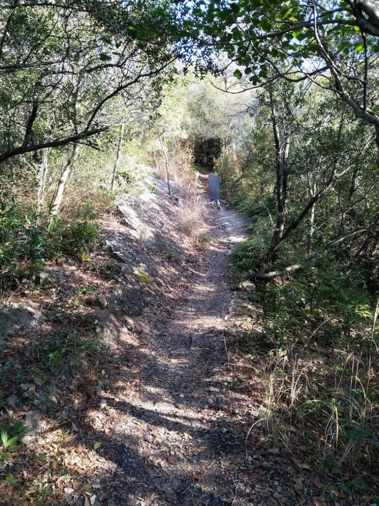 狼煙台からの坂道