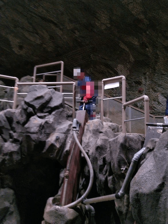 汲み上げポンプで水を汲み上げ体験